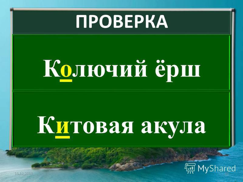 ПРОВЕРКА Колючий ёрш Кикитовая акула 13.12.201310