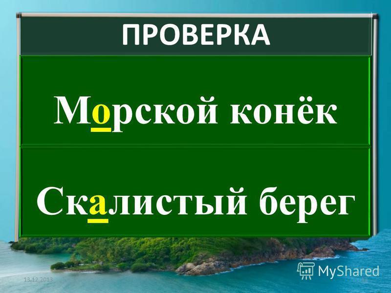 ПРОВЕРКА Моморской конёк Скачистый берег 13.12.201312