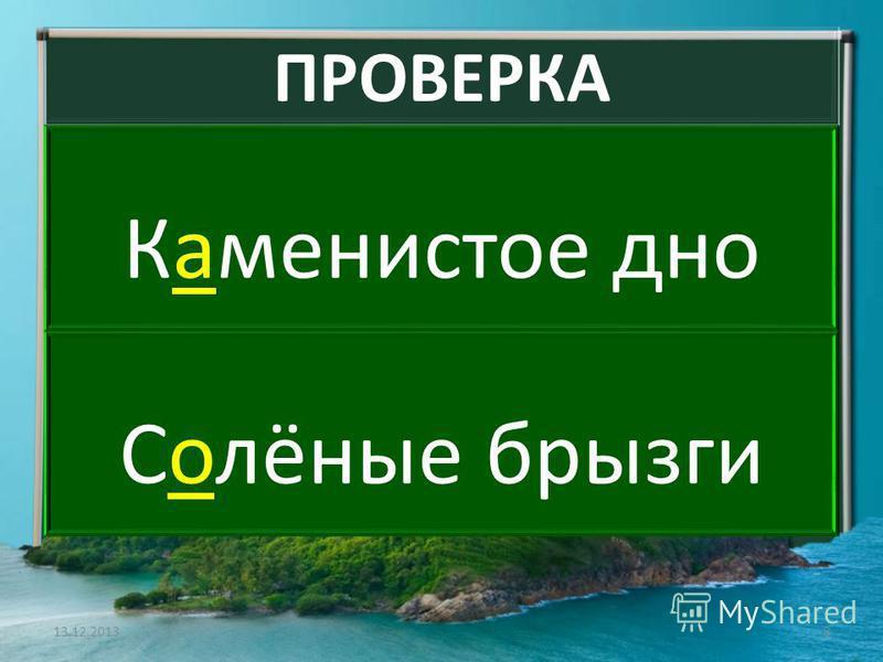 ПРОВЕРКА Какаменистое дно Солёные брызги 13.12.20138