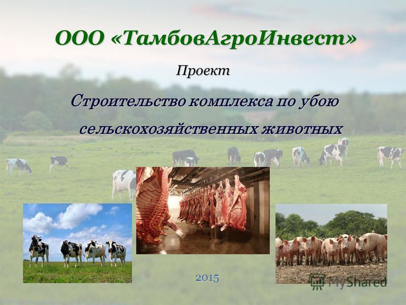 Проект Строительство комплекса по убою сельскохозяйственных животных ООО «Тамбов АгроИнвест» 2015