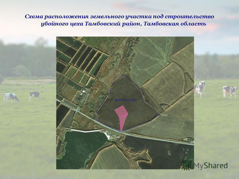 Схема расположения земельного участка под строительство убойного цеха Тамбовский район, Тамбовская область