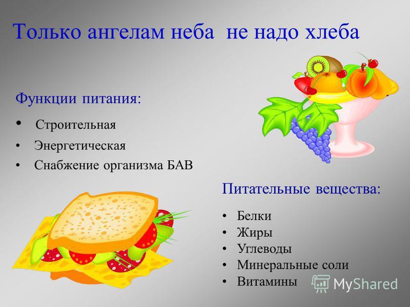 Только ангелам неба не надо хлеба Функции питания: Строительная Энергетическая Снабжение организма БАВ Питательные вещества: Белки Жиры Углеводы Минеральные соли Витамины