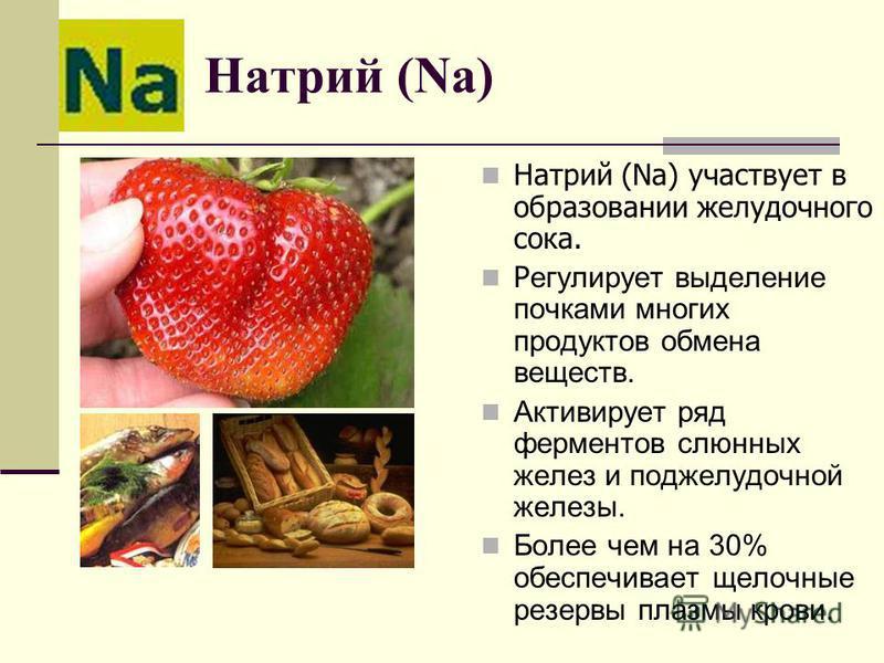 Натрий (Na) Натрий (Na) участвует в образовании желудочного сока. Р егулирует выделение почками многих продуктов обмена веществ. Активирует ряд ферментов слюнных желез и поджелудочной железы. Более чем на 30% обеспечивает щелочные резервы плазмы кров