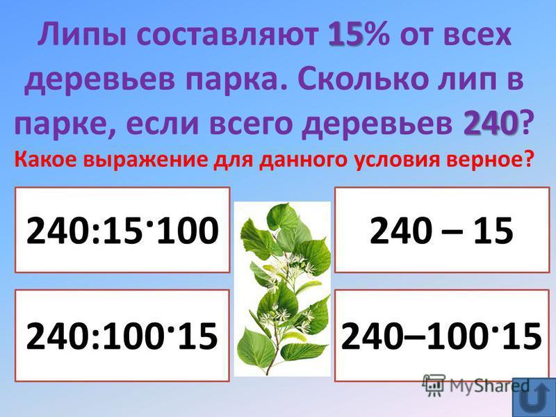 15 240 Липы составляют 15% от всех деревьев парка. Сколько лип в парке, если всего деревьев 240? Какое выражение для данного условия верное? 240:100·15 240:15·100 240–100·15 240 – 15