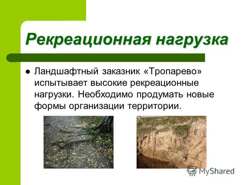 Рекреационная нагрузка Ландшафтный заказник «Тропарево» испытывает высокие рекреационные нагрузки. Необходимо продумать новые формы организации территории.