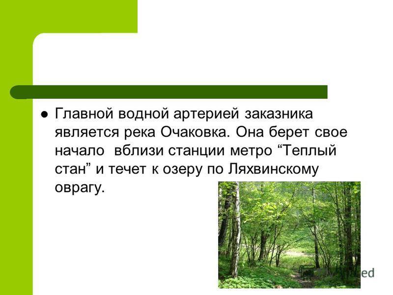 Главной водной артерией заказника является река Очаковка. Она берет свое начало вблизи станции метро Теплый стан и течет к озеру по Ляхвинскому оврагу.