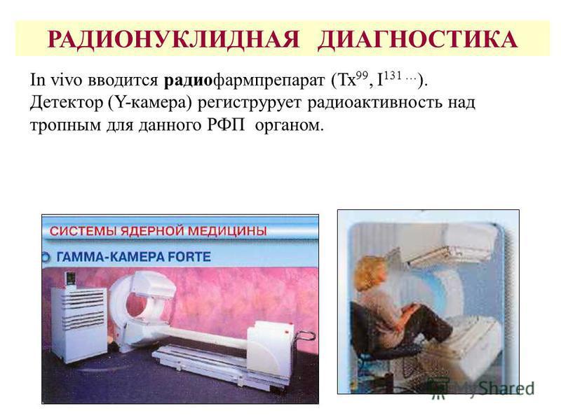 Нормальное распределение температур на поверхности и внутри тела человека