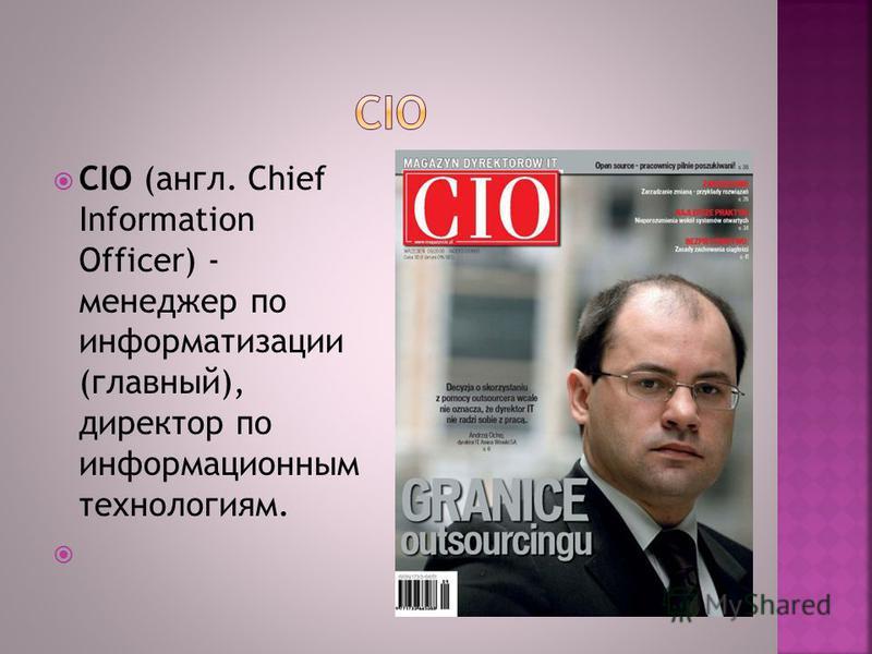 CIO (англ. Chief Information Officer) - менеджер по информатизации (главный), директор по информационным технологиям.