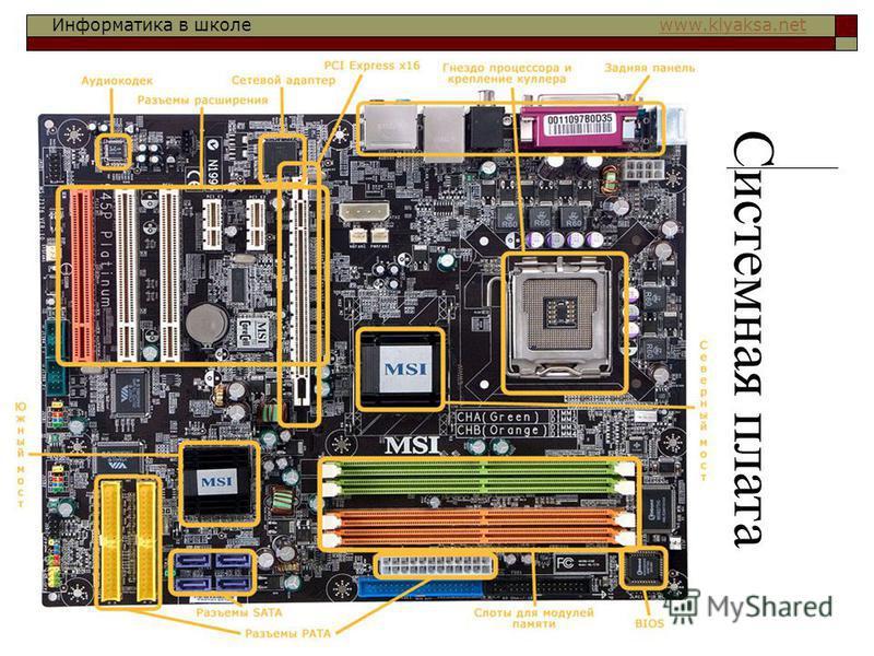Информатика в школе www.klyaksa.netwww.klyaksa.net Системная плата