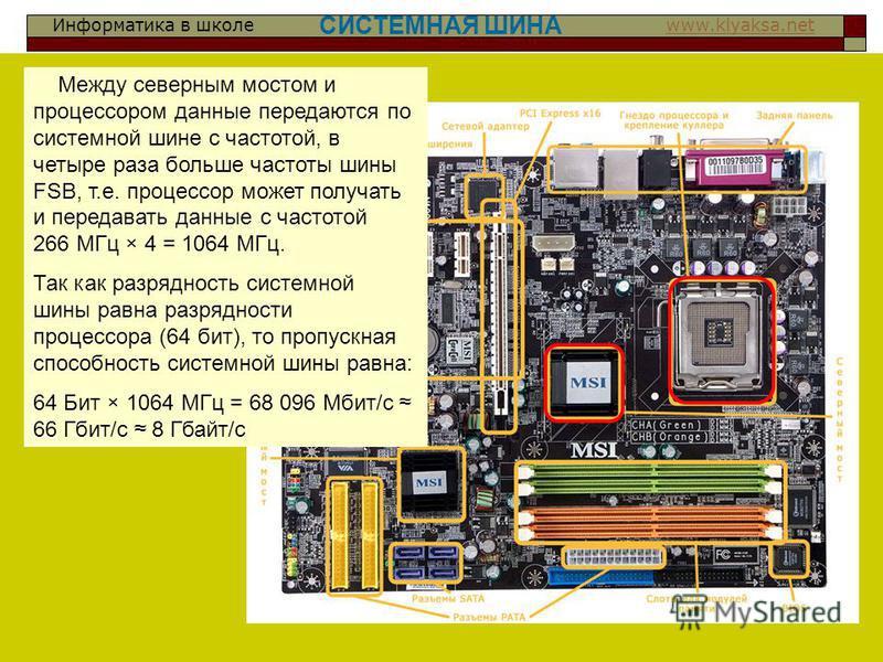 Информатика в школе www.klyaksa.netwww.klyaksa.net СИСТЕМНАЯ ШИНА Между северным мостом и процессором данные передаются по системной шине с частотой, в четыре раза больше частоты шины FSB, т.е. процессор может получать и передавать данные с частотой