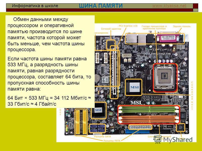 Информатика в школе www.klyaksa.netwww.klyaksa.net ШИНА ПАМЯТИ Обмен данными между процессором и оперативной памятью производится по шине памяти, частота которой может быть меньше, чем частота шины процессора. Если частота шины памяти равна 533 МГц,