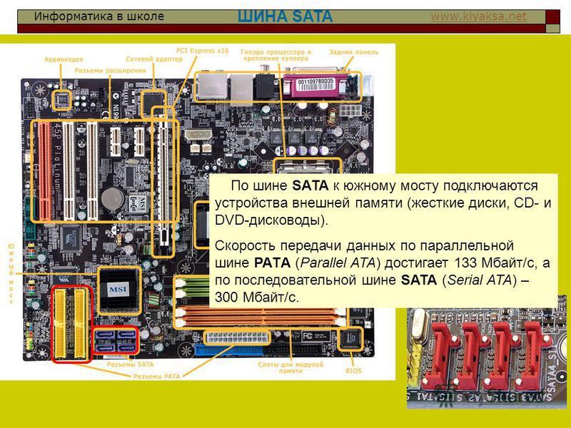 Информатика в школе www.klyaksa.netwww.klyaksa.net ШИНА SATA По шине SАТА к южному мосту подключаются устройства внешней памяти (жесткие диски, CD- и DVD-дисководы). Скорость передачи данных по параллельной шине РАТA (Parallel ATA) достигает 133 Мбай