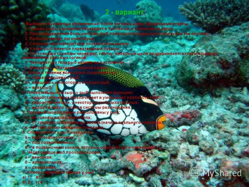 2 - вариант 1 Выберите буквенные обозначения, после которых даны правильные ответы. 1. Голова рыбы незаметно переходит в туловище, а туловище–в хвост. 2. При передвижении большинство рыб пользуются грудными плавниками как веслами. 3. Рыбы не имеют ор