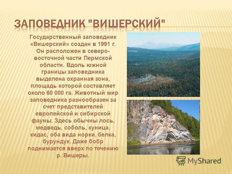Государственный заповедник «Вишерский» создан в 1991 г. Он расположен в северо- восточной части Пермской области. Вдоль южной границы заповедника выделена охранная зона, площадь которой составляет около 60 000 га. Животный мир заповедника разнообразе