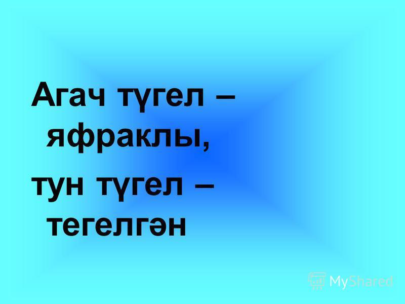 Агач түгел – яфраклы, тун түгел – тегелгән