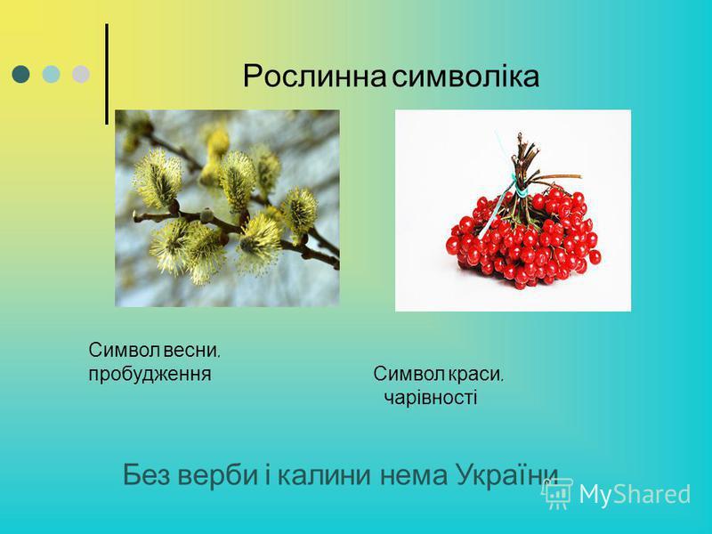 Рослинна символіка Без верби і калини нема України Символ весни, пробудження Символ краси, чарівності