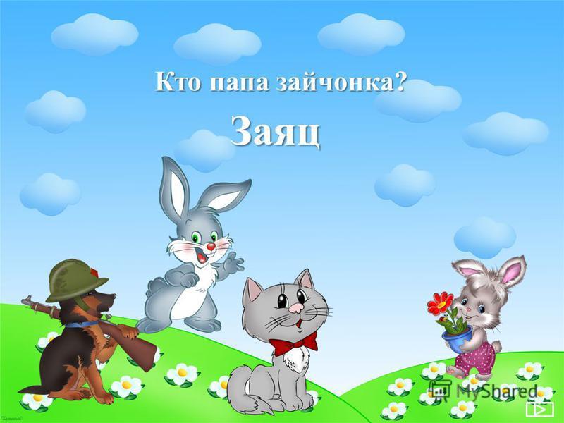 Кто папа зайчонка? Заяц