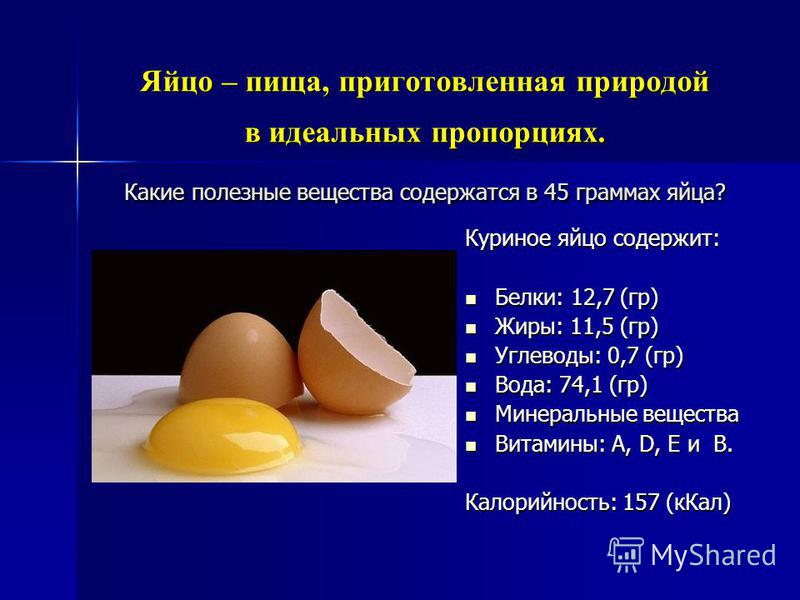 Яйцо – пища, приготовленная природой в идеальных пропорциях. Какие полезные вещества содержатся в 45 граммах яйца? Куриное яйцо содержит: Белки: 12,7 (гр) Белки: 12,7 (гр) Жиры: 11,5 (гр) Жиры: 11,5 (гр) Углеводы: 0,7 (гр) Углеводы: 0,7 (гр) Вода: 74
