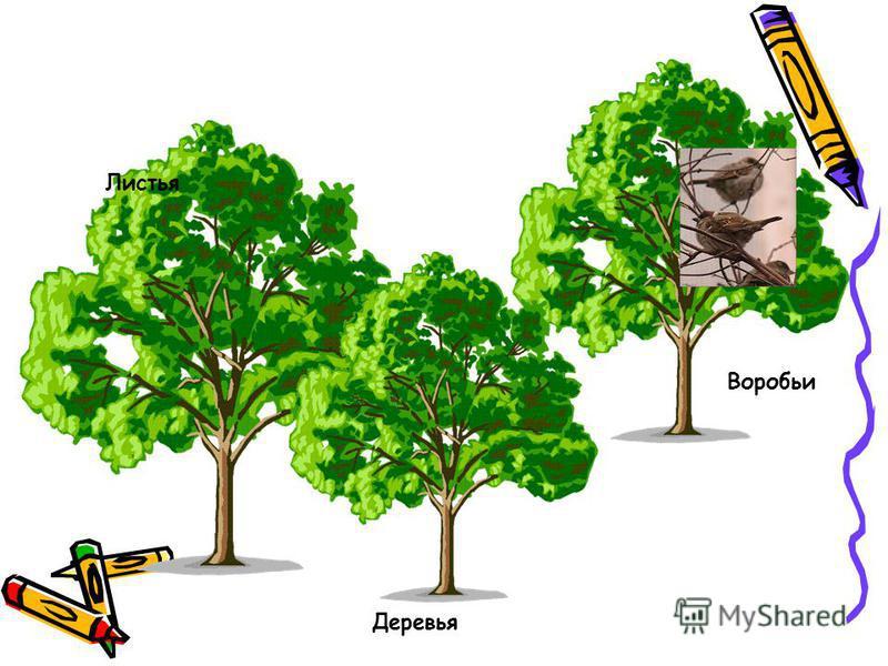 Деревья Листья Воробьи
