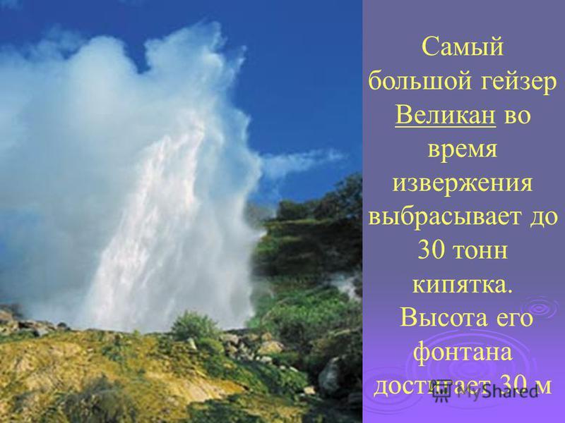 Самый большой гейзер Великан во время извержения выбрасывает до 30 тонн кипятка. Высота его фонтана достигает 30 м
