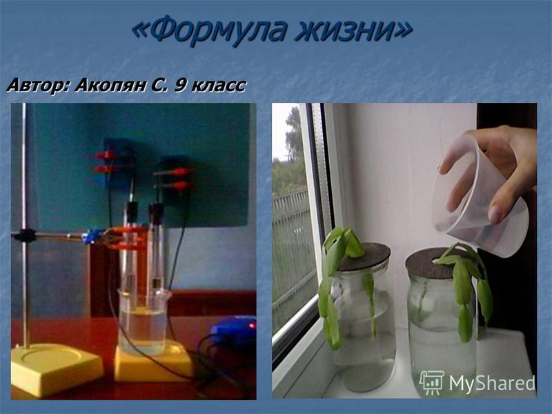 «Формула жизни» Автор: Акопян С. 9 класс