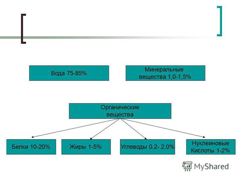 Вода 75-85% Минеральные вещества 1,0-1,5% Белки 10-20% Органические вещества Жиры 1-5%Углеводы 0,2- 2,0% Нуклеиновые Кислоты 1-2%