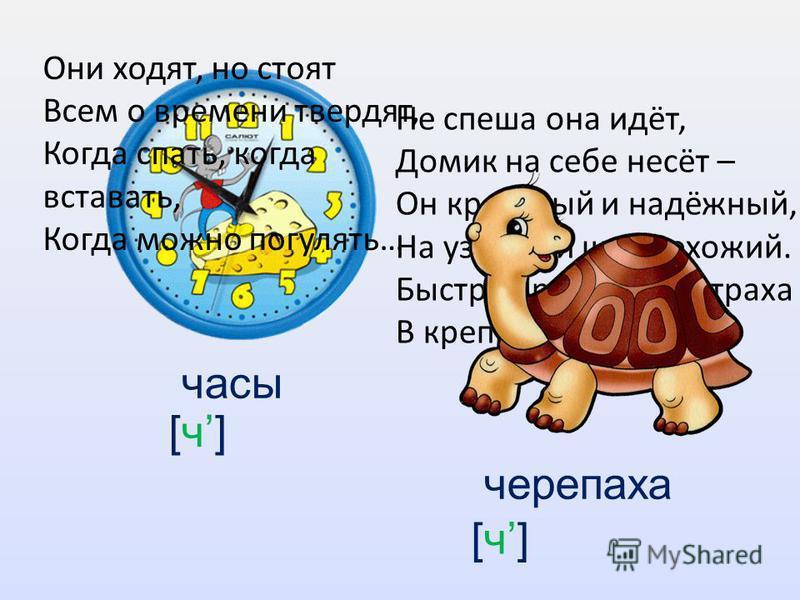 часы черепаха Не спеша она идёт, Домик на себе несёт – Он красивый и надёжный, На узорный щит похожий. Быстро прячется от страха В крепкий дом свой … Они ходят, но стоят Всем о времени твердят, Когда спать, когда вставать, Когда можно погулять… [ч]