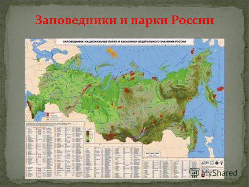 Заповедники и парки России