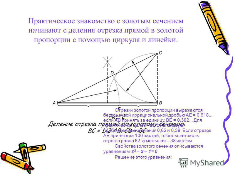 Практическое знакомство с золотым сечтением начинают с деления отрезка прямой в золотой пропорции с помощью циркуля и линейки. Рис. 2 Деление отрезка прямой по золотому сечению. BC = 1/2 AB; CD = BC Отрезки золотой пропорции выражаются бесконечной ир