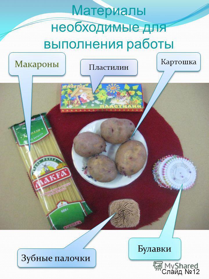 Материалы необходимые для выполнения работы Картошка Пластилин Макароны Зубные палочки Булавки Слайд 12