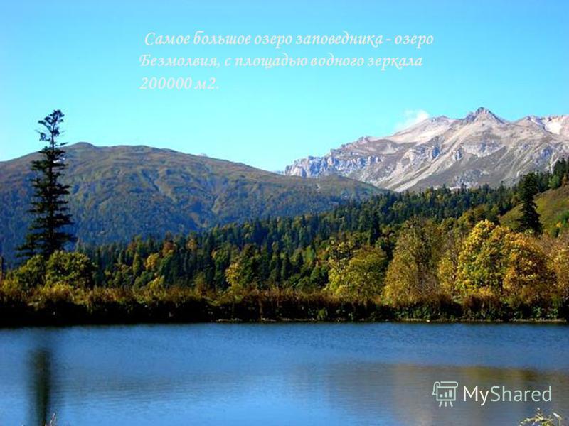 Самое большое озеро заповедника - озеро Безмолвия, с площадью водного зеркала 200000 м 2.