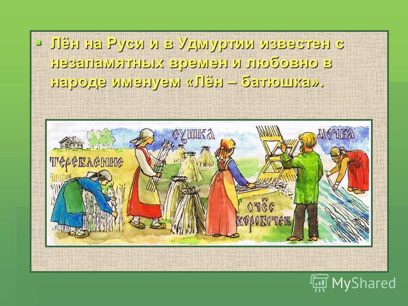 Лён на Руси и в Удмуртии известен с незапамятных времен и любовно в народе именуем «Лён – батюшка». Лён на Руси и в Удмуртии известен с незапамятных времен и любовно в народе именуем «Лён – батюшка».