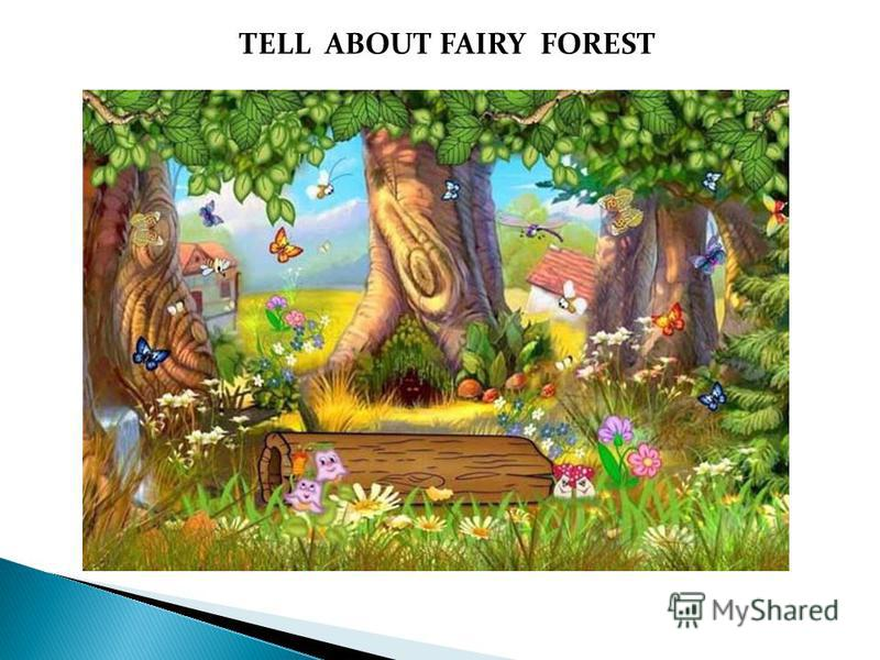 TELL ABOUT FAIRY FOREST