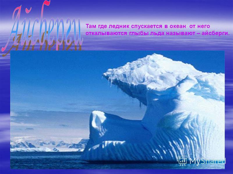Там где ледник спускается в океан от него откалываются глыбы льда называют – айсберги.