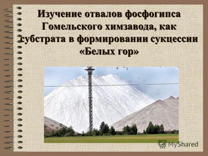 Изучение отвалов фосфогипса Гомельского химзавода, как субстрата в формировании сукцессии «Белых гор»