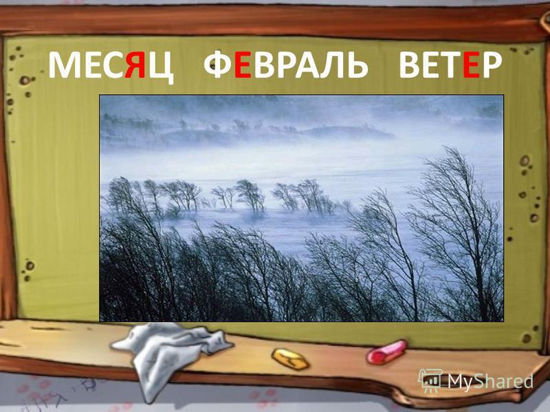 МЕСЯЦ ФЕВРАЛЬ ВЕТЕР