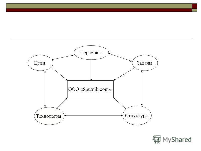 ООО «Sputnik.com» Цели Персонал Технология Задачи Структура