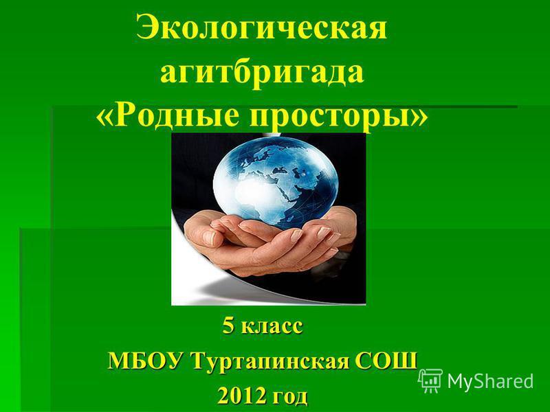 Экологическая агитбригада «Родные просторы» 5 класс МБОУ Туртапинская СОШ 2012 год