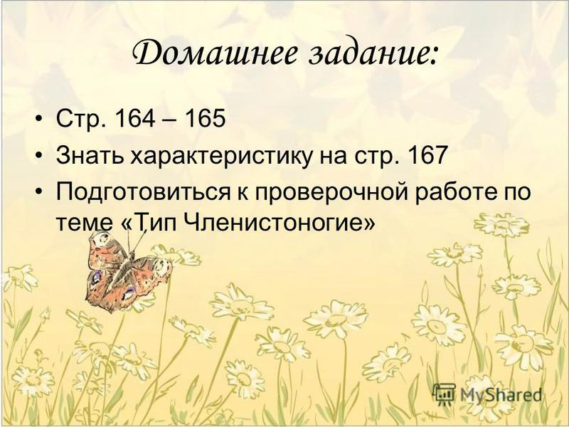 Домашнее задание: Стр. 164 – 165 Знать характеристику на стр. 167 Подготовиться к проверочной работе по теме «Тип Членистоногие»