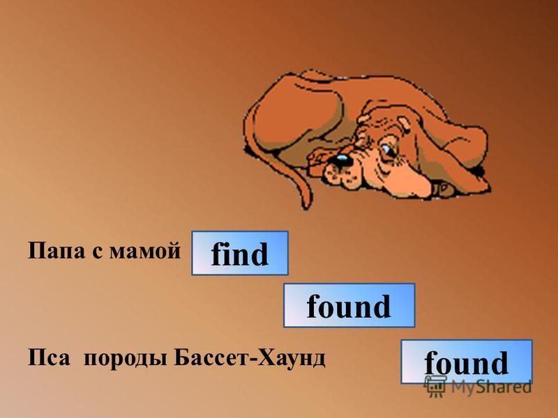 Папа с мамой Пса породы Бассет-Хаунд found find