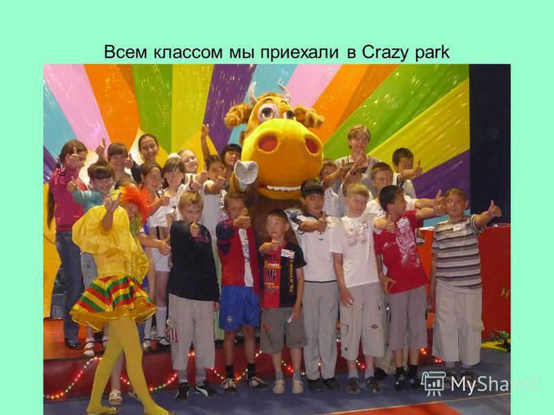 Всем классом мы приехали в Crazy park