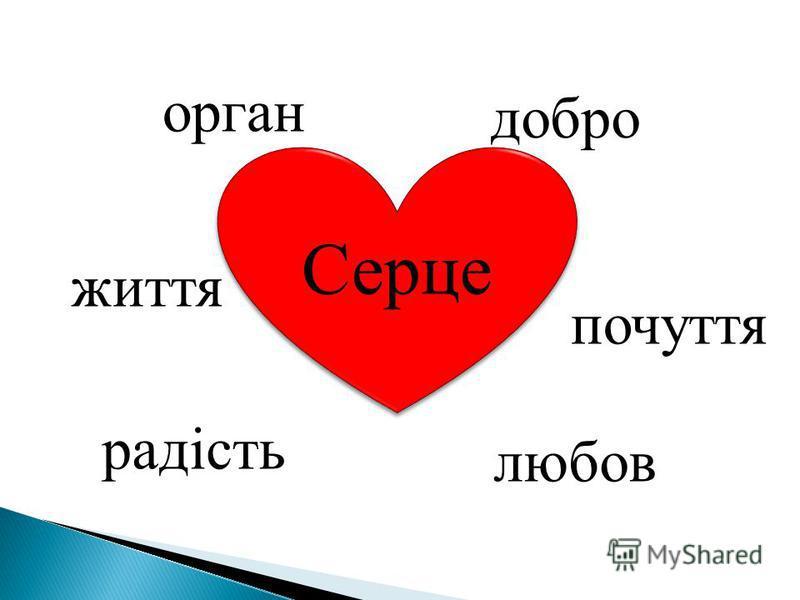 Серце орган добро життя почуття радість любов