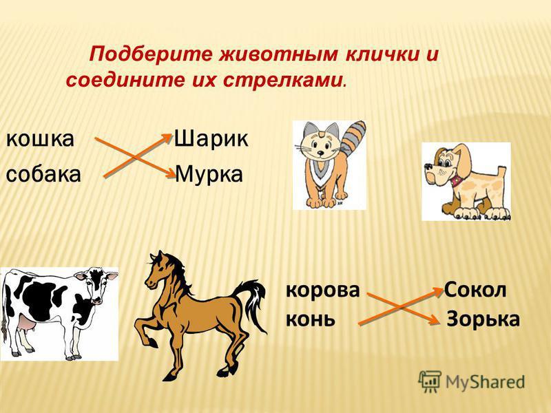 Дети любят сказки Александра Сергеевича Пушкина. Составьте из слов предложение и запишите его.
