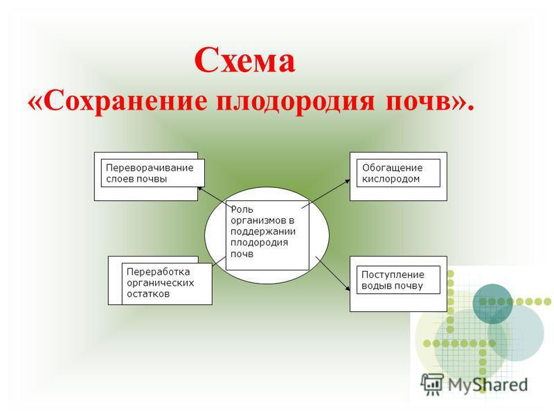 Схема «Сохранение плодородия почв». Роль организмов в поддержании плодородия почв Переворачивание слоев почвы Обогащение кислородом Переработка органических остатков Поступление воды в почву