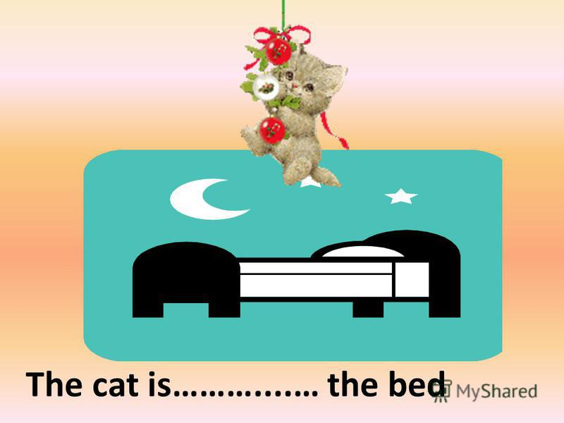 The cat is………....… the bed above