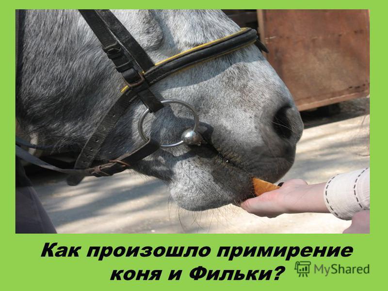 Как произошло примирение коня и Фильки?