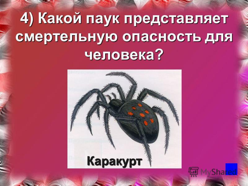 4) Какой паук представляет смертельную опасность для человека? Каракурт