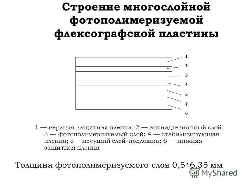 Строение многослойной фотополимеризуемой флексографской пластины 1 верхняя защитная пленка; 2 антиадгезионный слой; 3 фотополимеризуемый слой; 4 стабилизирующая пленка; 5 несущий слой-подложка; 6 нижняя защитная пленка Толщина фотополимеризуемого сло