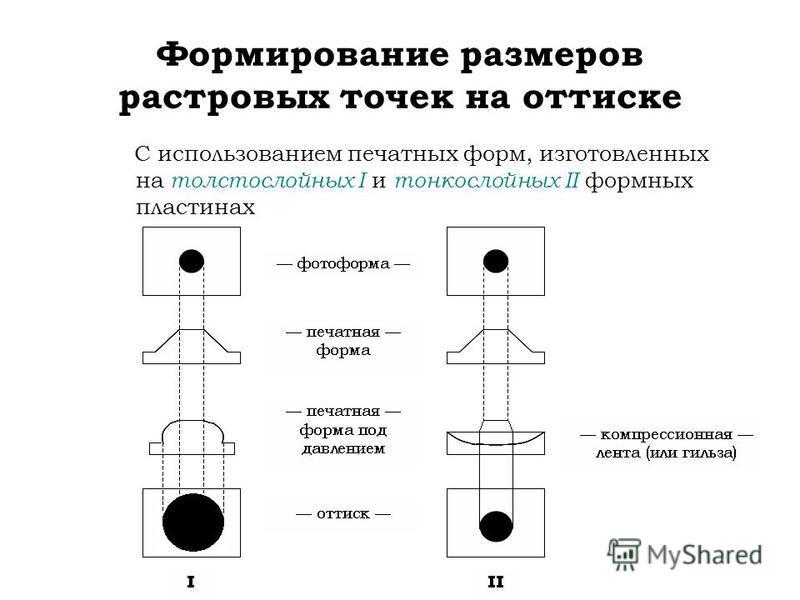 Формирование размеров растровых точек на оттиске С использованием печатных форм, изготовленных на толстослойных I и тонкослойных II формных пластинах