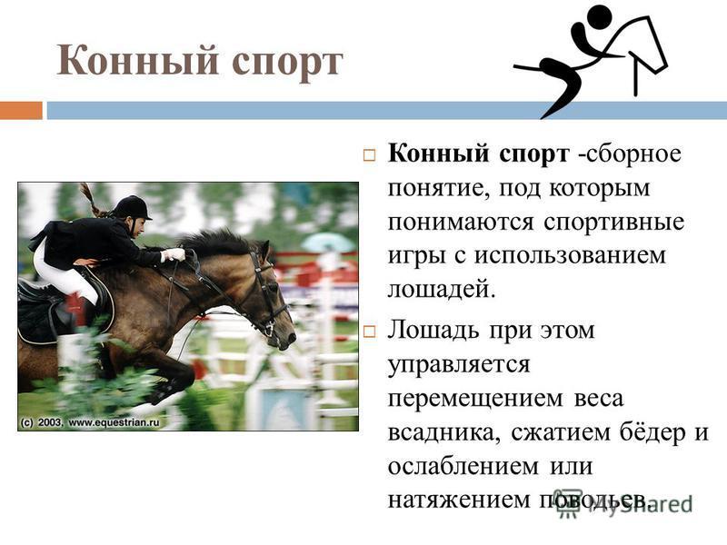 Конный спорт Конный спорт -сборное понятие, под которым понимаются спортивные игры с использованием лошадей. Лошадь при этом управляется перемещением веса всадника, сжатием бёдер и ослаблением или натяжением поводьев.